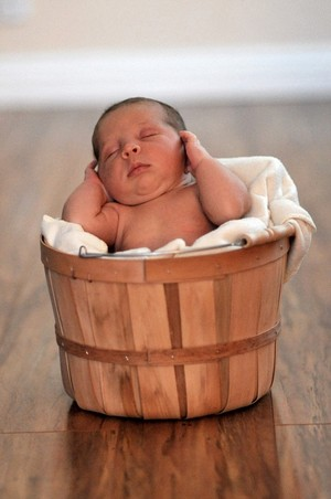 Infant in a basket posing for a photo.